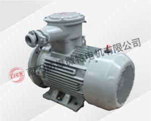 YBXN系列隔爆型三相异步电动机