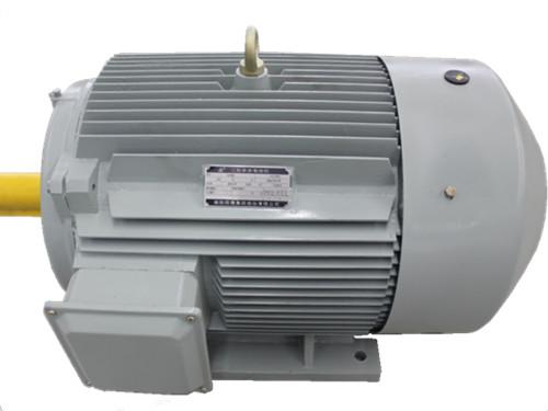 JY(ZC)系列舰用低噪三相异步电动机