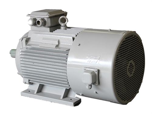 Y系列变频调速用三相异步电动机