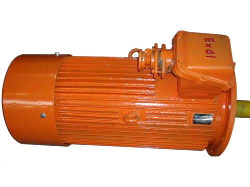YBS系列运输机用隔爆型三相异步电动机