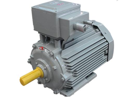 YBX4系列超高效低压隔爆型三相异步电动机